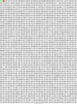 Image 30 x 50 monochrome